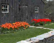 Berkshire Botanical Garden - Attractions In The Berkshires, Theatre In The Berkshires, Museums In The Berkshires, Attractions In Berkshire County, Theatres In Berkshire County, Museums In Berkshire County, Tanglewood, Colonial Theater, Williamstown Theatre